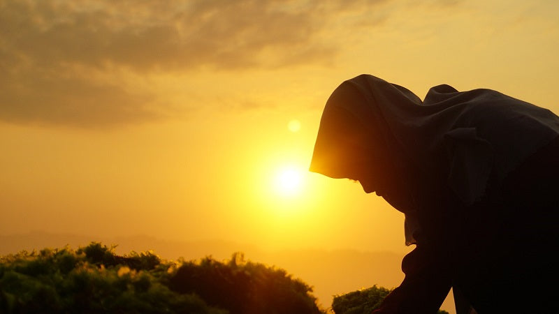 Muslim woman at sunset