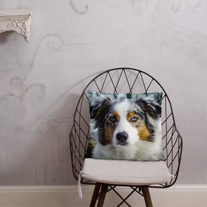 Beautiful Australian Shepherd 18x18 Pillow
