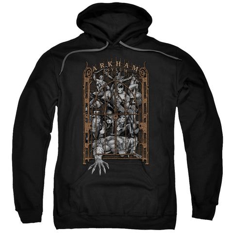 Batman - Arkham's Gate Adult Pull Over Hoodie