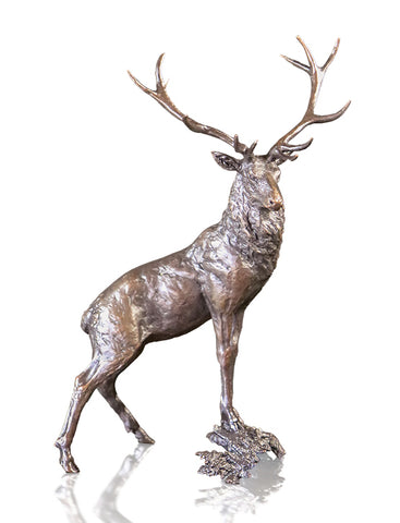 Richard Cooper Solid Bronze - Various Wildlife