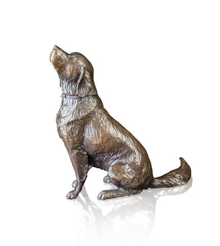 Richard Cooper Solid Bronze - Dogs