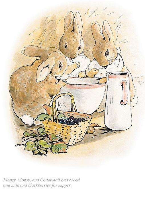 Beatrix Potter- Flopsy, Mopsy and Cotton-Tail Had Bread and Milk | Official Collectors Edition | Free UK Delivery