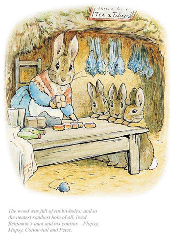 Beatrix Potter-The Neatest Sandiest Rabbit Hole Of All | Official Collectors Edition | Free UK Delivery