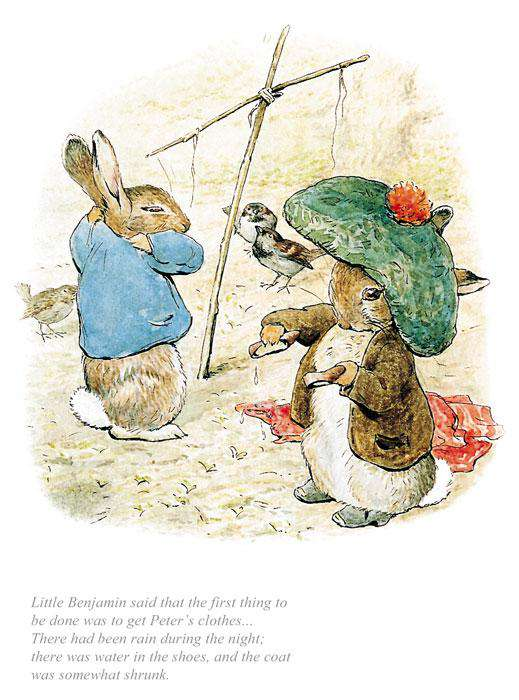 Beatrix Potter The First Thing Was To Get Peter's Clothes