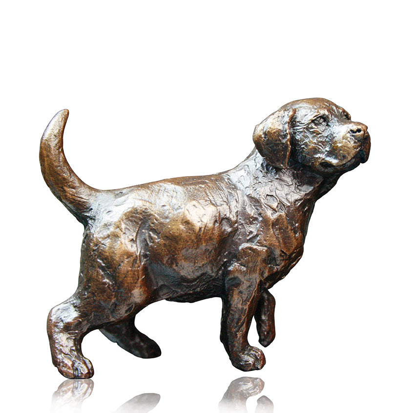 Richard Cooper solid bronze small lab