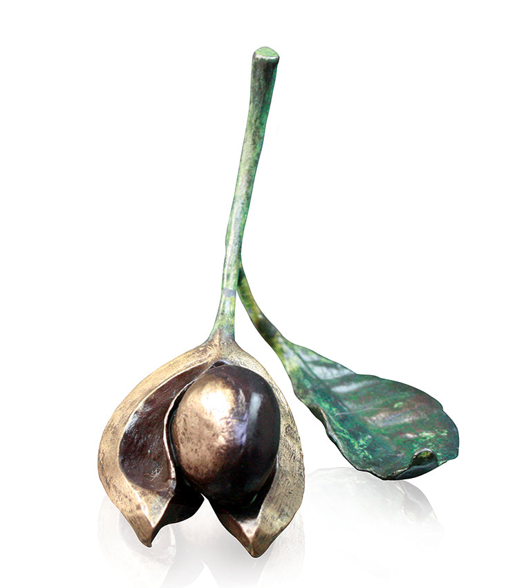 Richard Cooper bronze conker with leaf