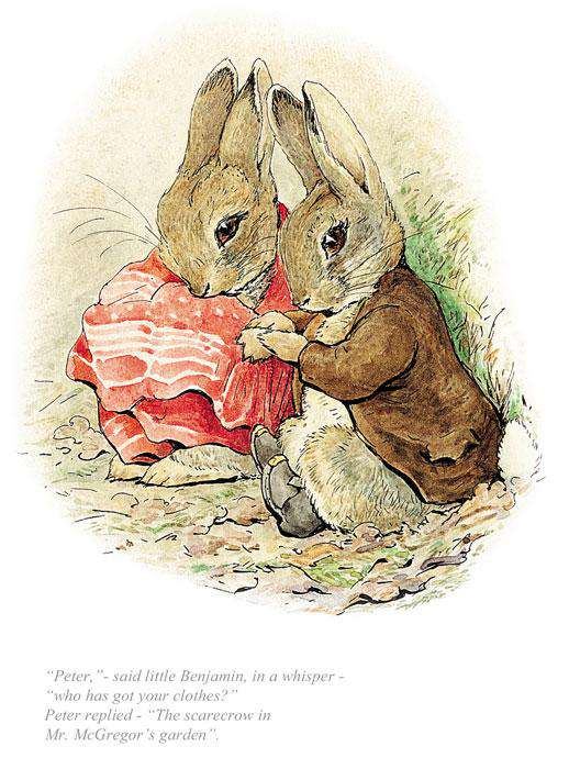 Beatrix Potter-Peter, Who Has Got Your Clothes? | Official Collectors Edition | Free UK Delivery