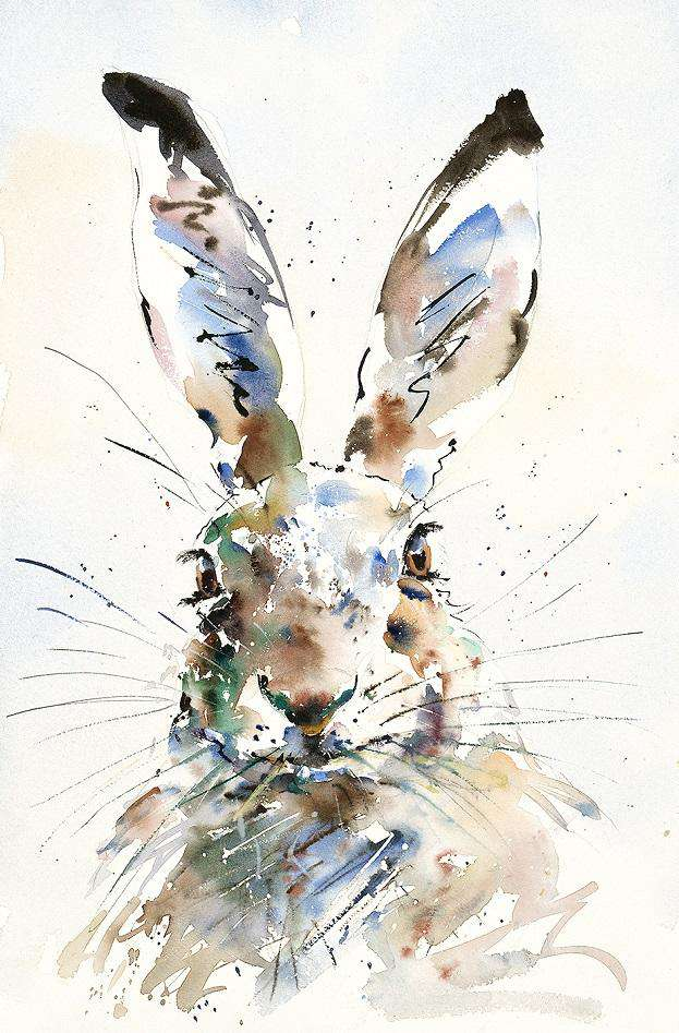 Jake Winkle Hare Brained mounted