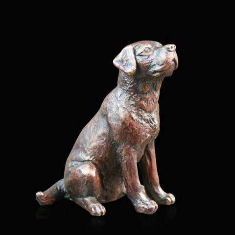 Small Labrador Sitting (864)
