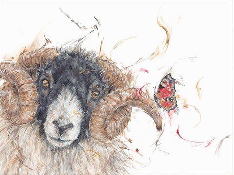 Aaminah Snowdon Hey Ewe sheep new release art print