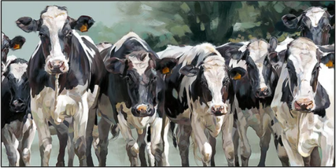 Debbie Boon Together cows Artist proof