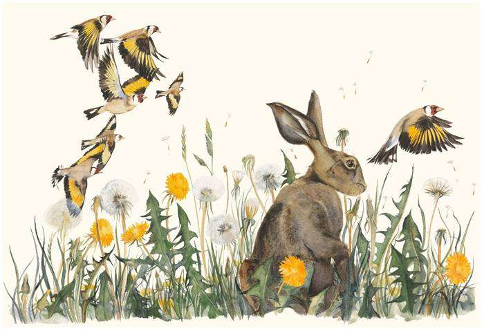 Jackie Morris & Robert MacFarlane The Lost Words Dandelion Limited Edition Print
