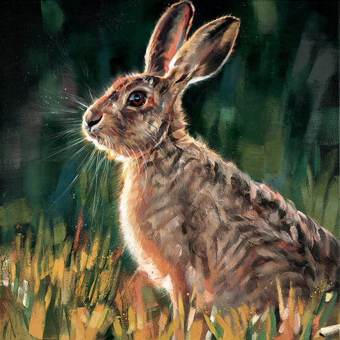Debbie Boon Watchful hare new release