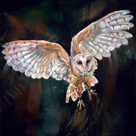 Debbie Boon Night Flight owl