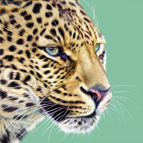 cheetah cat animal whiskers blue wild painting
