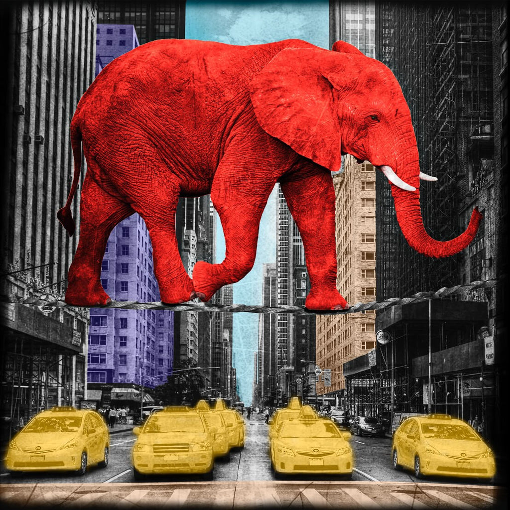 Lars Tunebo Crossing 5th Avenue elephant in New York