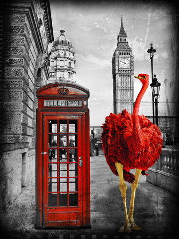 Lars Tunebo Looking for a friend London telephone box