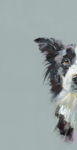 Nicky Litchfield Curious Collie mounted artwork