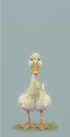 Nicky Litchfield Quackers duckling