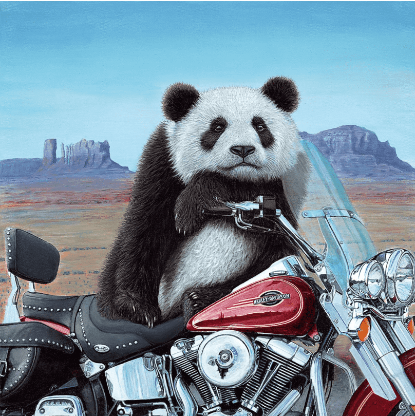 Steve Tandy Born to be Wild