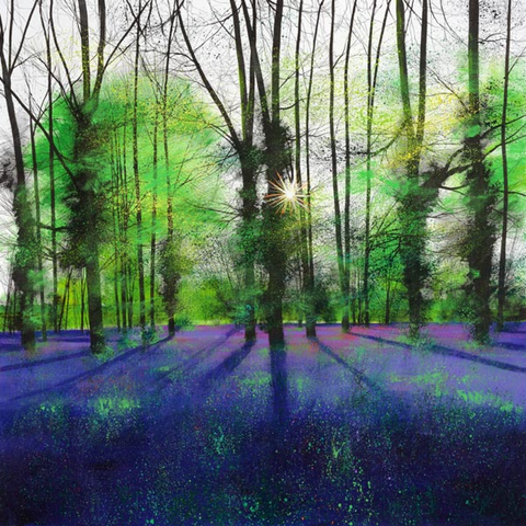 Paul Evans Sunburst and Bluebells
