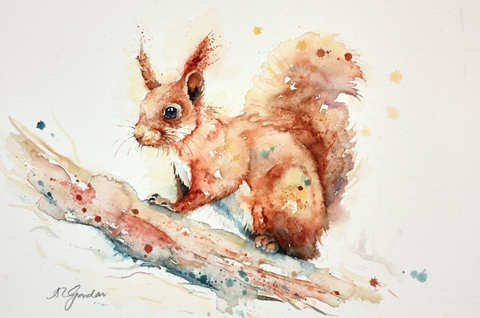 Amanda Gordon Little Red Squirrel