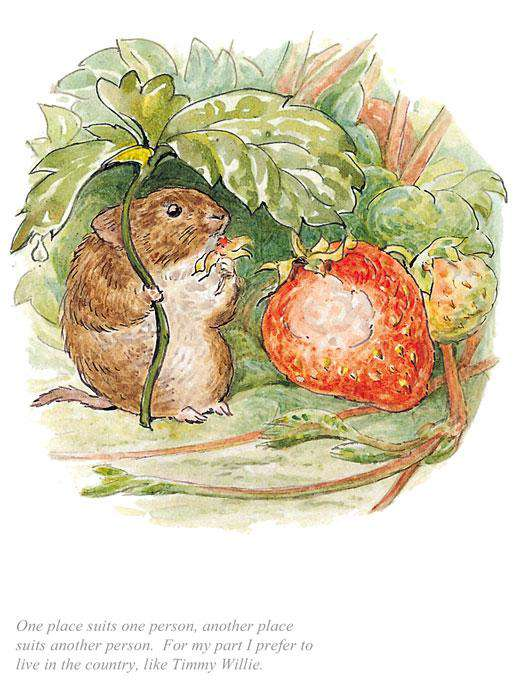 Beatrix Potter I Prefer To Live In The Country