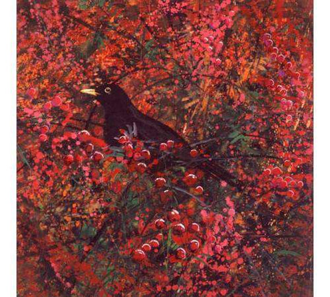 Berries and Blackbird