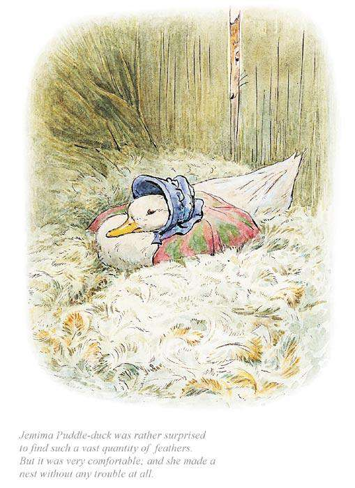 Beatrix Potter Jemima Was Surprised To Find A Quantity Of Feathers
