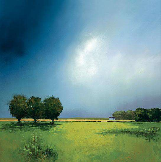 Barry Hilton Green Fields of Home