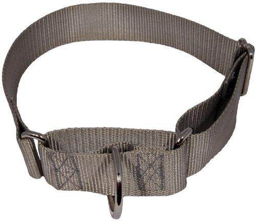 1.5 Inch Heavyduty Nylon Martingale Collar for Greyhounds - Silver