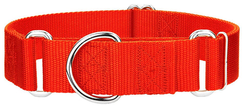 1.5 Inch Heavyduty Nylon Martingale Collar for Greyhounds - Hot Orange