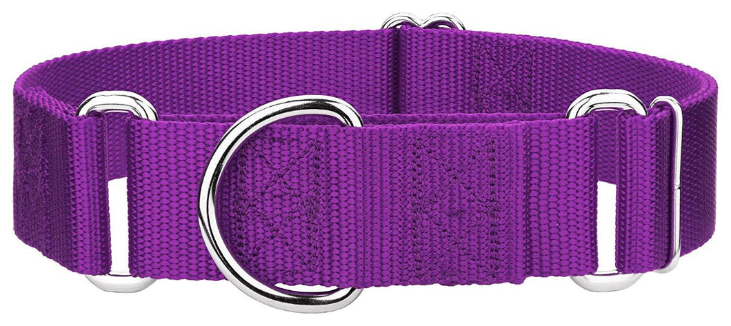 1.5 Inch Heavyduty Nylon Martingale Collar for Greyhounds - Purple