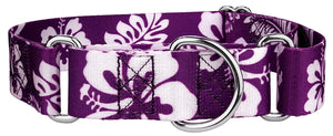 1.5 Inch Purple Hawaiian Martingale Collar for Greyhounds