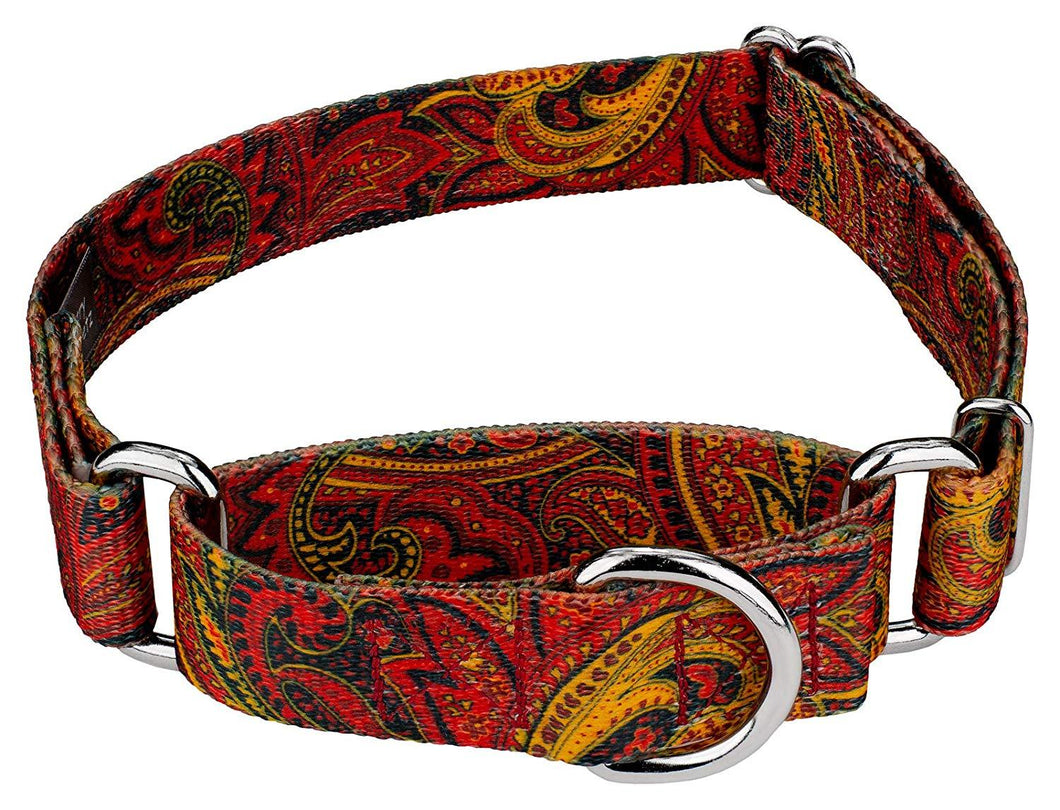 1.5 Inch Fire Paisley Martingale Collar for Greyhounds