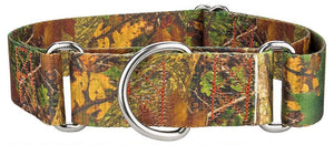 1.5 Inch Southern Forest Camo Martingale Collar for Greyhounds
