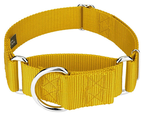 1.5 Inch Heavyduty Nylon Martingale Collar for Greyhounds - Gold