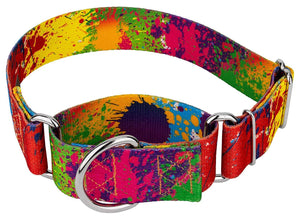 1.5 Inch Paint Splatter Martingale Collar for Greyhounds
