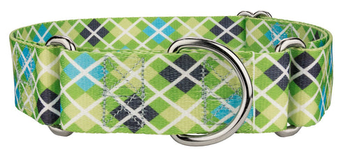 1.5 Inch Margarita Argyle Martingale Collar for Greyhounds