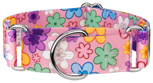 1.5 Inch May Flowers Martingale Collar for Greyhounds