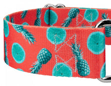 Load image into Gallery viewer, 1.5 Inch Tropical Tango Martingale Collar for Greyhounds