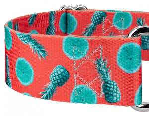 1.5 Inch Tropical Tango Martingale Collar for Greyhounds