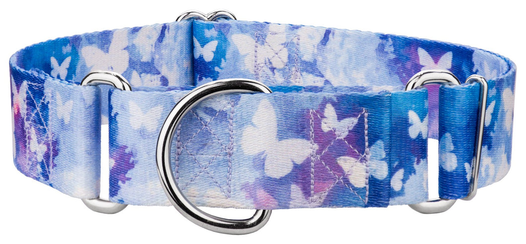 1.5 Inch Watercolor Butterflies Martingale Collar for Greyhounds