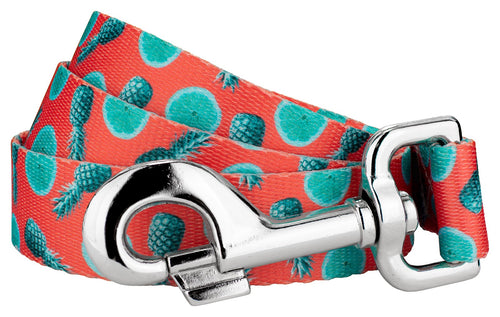 Tropical Tango Leash for Greyhounds