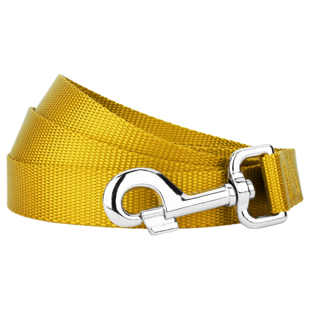 Gold Heavyduty Nylon Leash for Greyhounds
