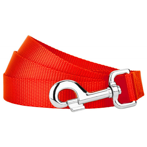 Hot Orange Heavyduty Nylon Leash for Greyhounds