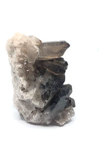Smoky Quartz Irradiated Crystal from Brazil 11ozs FREE SHIPPING