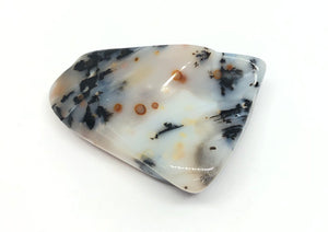 Dendritic Agate Polished Stone from Mexico 25g 1 1/2in FREE SHIPPING