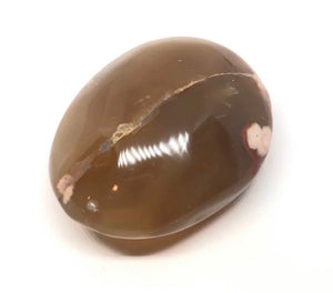 Flower Agate Palm Stone from Madagascar 167g Over 2in. FREE SHIPPING