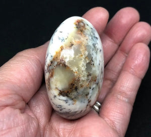 Dendritic Agate Palm Stone from Madagascar 88g Approximately 2in FREE SHIPPING